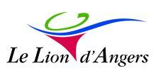Ville du Lion d'Angers