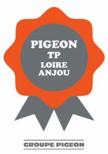 Pigeon TP Loire Anjou